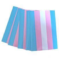 Klistermærke Trans Flag