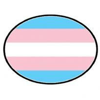 Club HomowareMagnet til bilen, Trans flag motiv