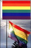 Regnbueflag luksus - X-Large